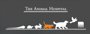 The Animal Hospital of Carrboro